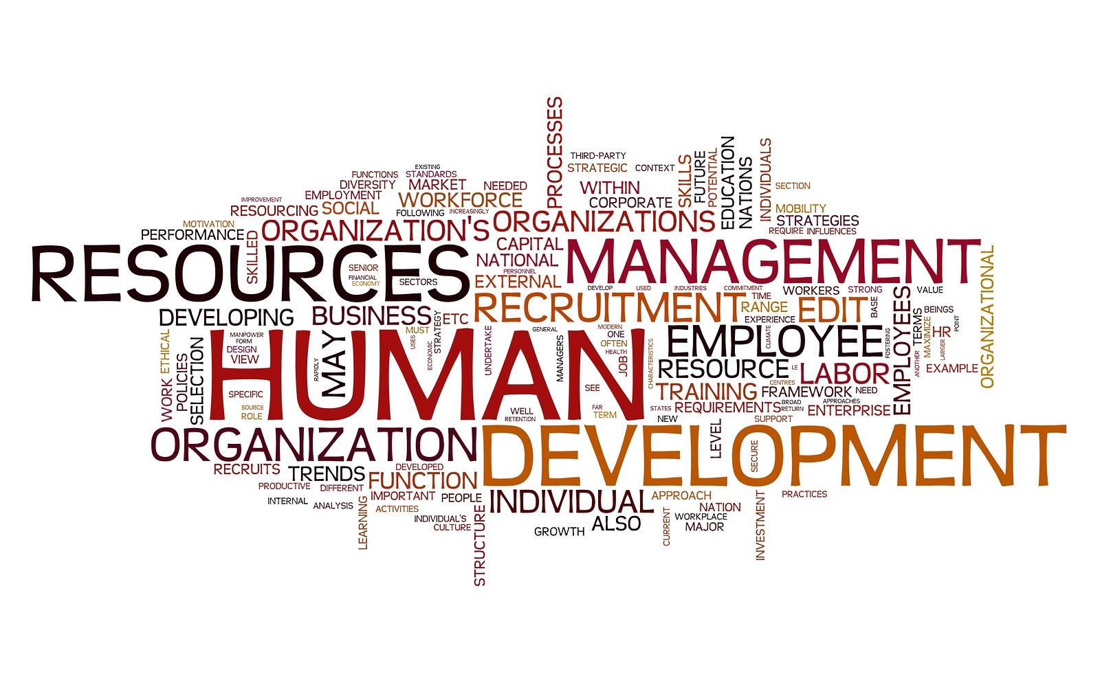 HR - Human resources development concept in word tag cloud